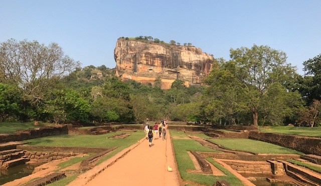 Sri Lanka land of tea, spices and elephants
