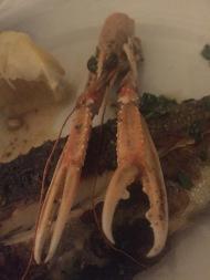 croatia sea food