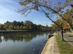 park timisoara romania