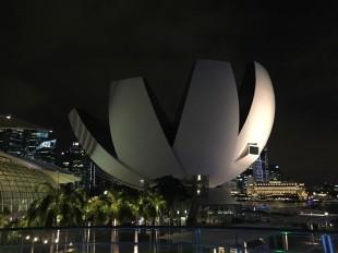 singapore lotus